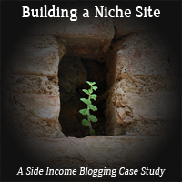 building a niche site thumb