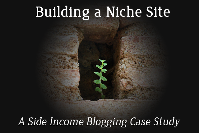 Building a niche site