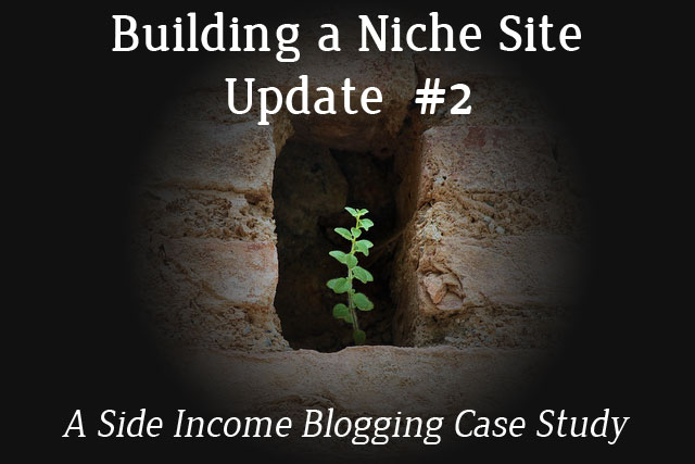 Building a Niche Site Update #2
