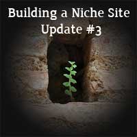 Thumbnail image for Building a Niche Site Update#3