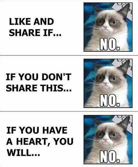 grumpy-cat-facebook-no