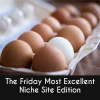 Thumbnail image for The Friday Most Excellent &#8211; Niche Sites Edition