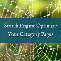 Search Engine Optimize Category  Pages