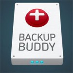BackupBuddy – How to restore your backups