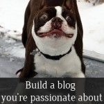 Build a blog you're passionate about or don't even bother