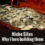 Niche Sites – Why I love building them