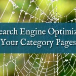 Search Engine Optimize your category pages